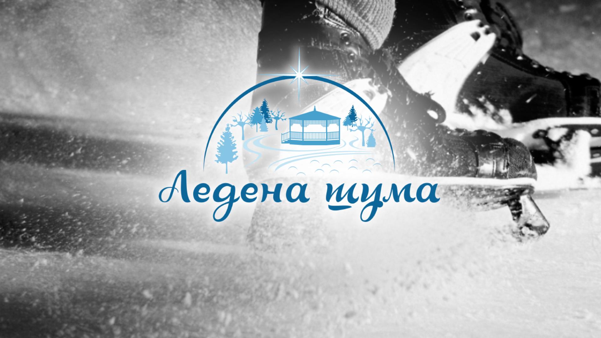 ledena_suma